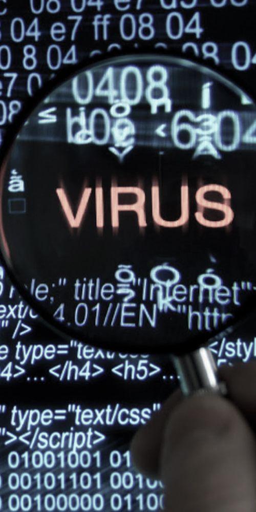 ¿Un topo y un virus para conectar a los nuevos empleados?